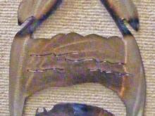 southwestern,metal,art,eagle,feather,buffalo,symbol