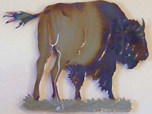 buffalo,bison,tatanka,indian,name,plains,wildlife,art