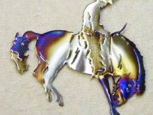 bronco,rodeo,saddle,riding,western,art