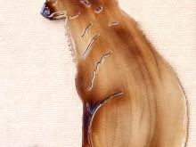 fox,smart,cunning,red,silver,wildlife,animal,hunting,art