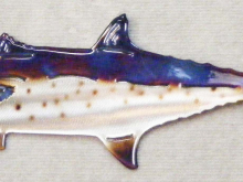 spanish,mackerel,gulf,coast,fish,game,marine,art